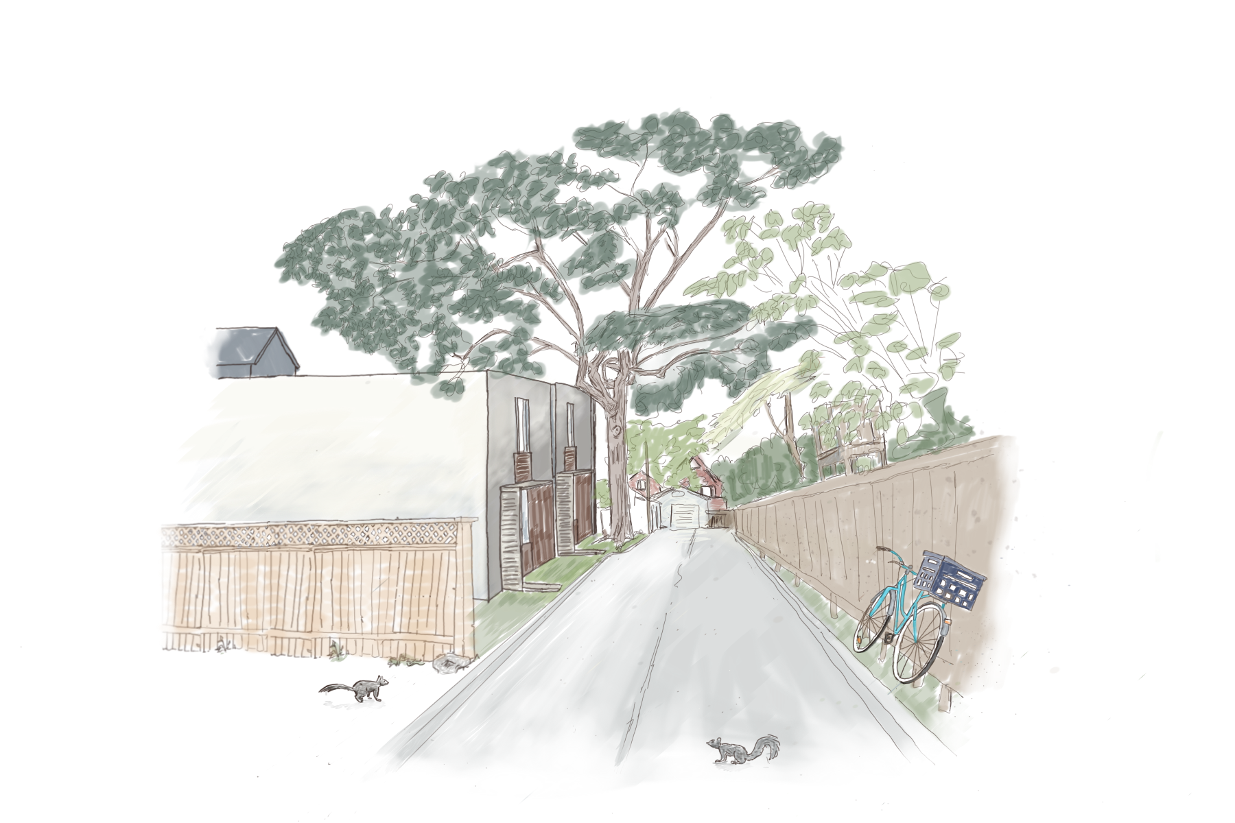 Laneway Houses w Tree